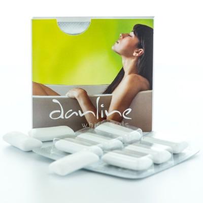 Gum 6-pack